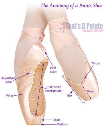 Pointe Shoe Fitting Guide Thats D Pointe Dance Shop
