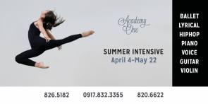 https://www.facebook.com/Academy-One-Music-Dance-Center-203884232973751/